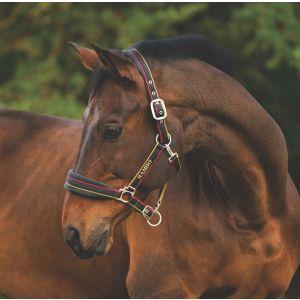 Horseware Rambo Padded Headcollar - Whitney Stripe