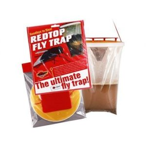 Red Top Fly Catcher