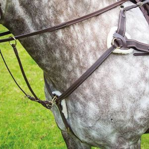 Shires Salisbury Five Point Breastplate