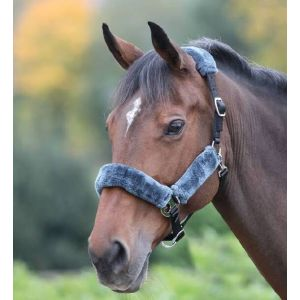 Shires Fleece Lined Headcollar