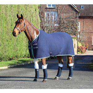 Shires Tempest Original Tech Cooler