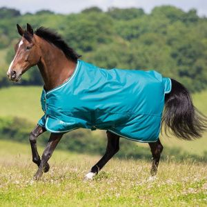 Shires Tempest Original 50 Standard Turnout