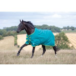 Shires Tempest Original 50 Standard Neck Turnout SS19