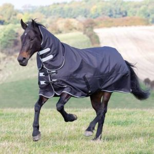Shires Tempest Plus 300 Turnout Combo Rug AW20