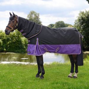 StormX Original 200 Turnout Rug with Detachable Neck Cover