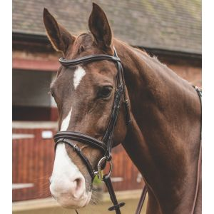 Mark Todd Cut Away Bridle