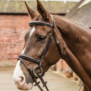 Mark Todd Contrast Stitch Raised Bridle
