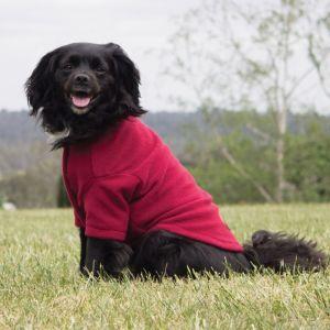 Weatherbeeta ComFITec Dog Jumper