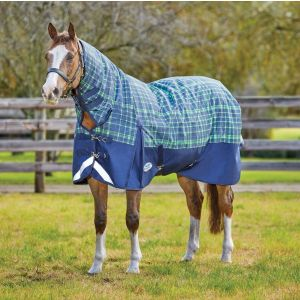 Weatherbeeta ComFiTec Plus Dynamic Combo Medium Turnout