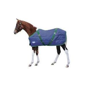 Weatherbeeta Channel Quilt 210D Foal Standard Neck Quilt