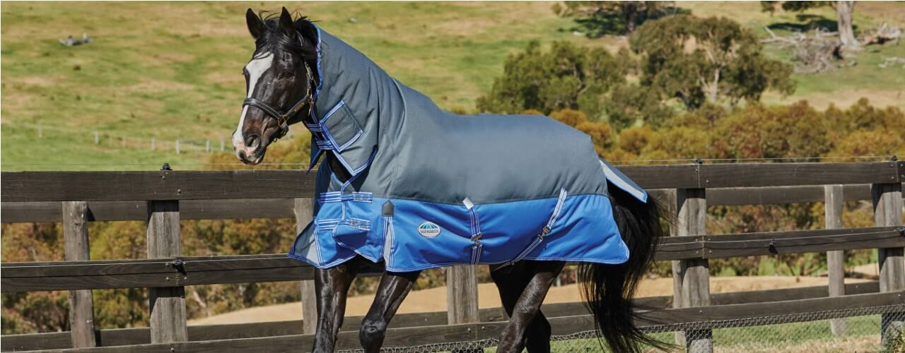 How to find the perfect horse rug